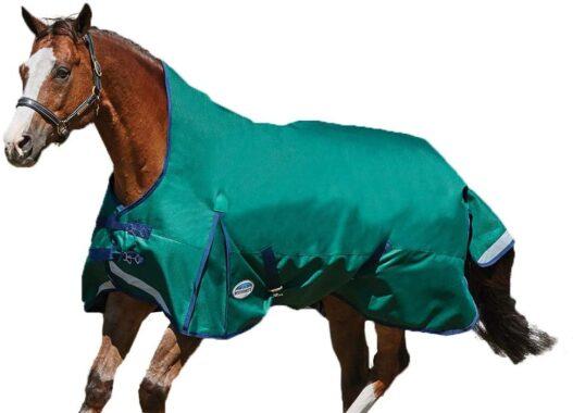 Weatherbeeta Comfitec Plus Dynamic High Neck Blanket Lite