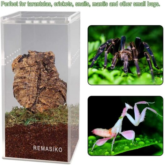 "REMASIKO Magnetic Acrylic Reptile Cage 3""x3""x6"" Nano Tall Enclosure Transparent Reptile Breeding Box Terrarium Tank Tarantula Scorpion Sling Isopods Invertebrates Insect Mantis"