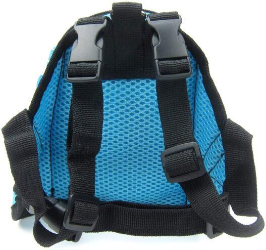 Alfie Pet - Oliga Backpack Harness with Leash Set